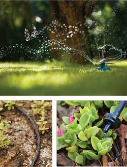 Garden_Irrigation2