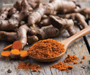 Live_Spices4